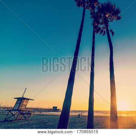 palms and lifeguard tower in Newport Beach California