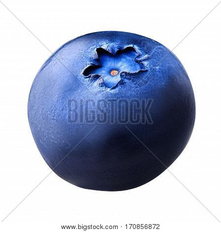 Single blueberry berry isolated on white background. One blueberry berry with clipping path. Close up. Macro.