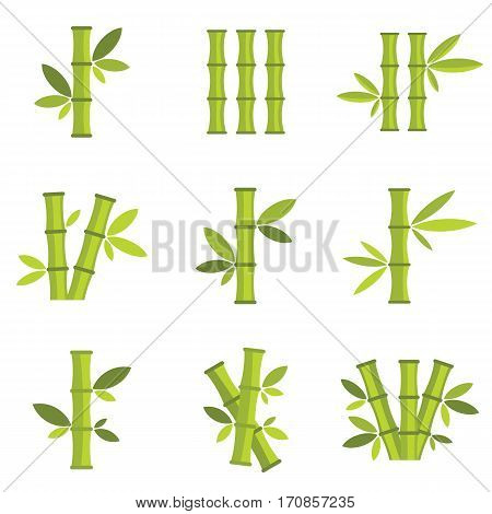 Bamboo vector icons set isolated on white background. Stick bamboo with foliage and leaves vector illustration.