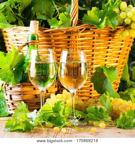 Two glasses and bottle of white wine basket of grapes. wooden background.
