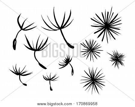 Set ink abstract designs drawn by hand. Umbrellas of dandelion seeds. Bit of fluff dandelion.Black stars.