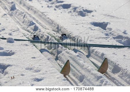 Cross-country skis on track at sunny winter day. Touristic equipment for promenade and healthy lifestyle