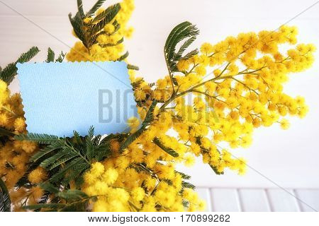 Vase with mimosa flowers and empty card on wooden background