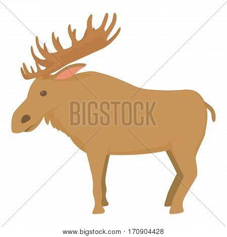 Elk icon. Cartoon illustration of elk vector icon for web