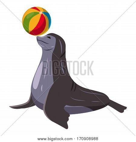 Sea bear icon. Cartoon illustration of sea bear vector icon for web