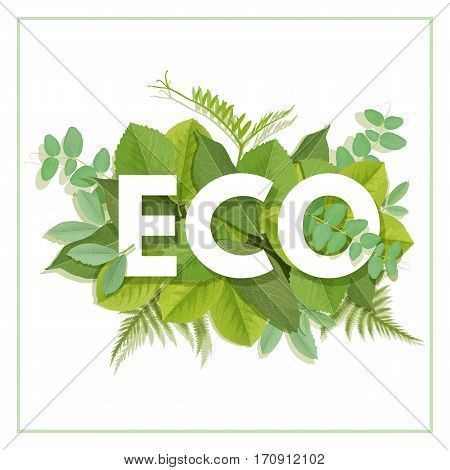 ECO letter with green leaves. Organic vector label. Foliage lettering. Floral illustration. Nature poster. For t-shirt, fashion, prints, banner or package design