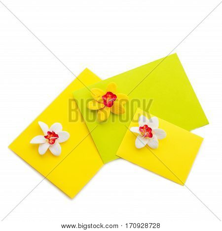 Closeup shot of three small yellow envelopes decorated with art clay narcissus. Handmade paper work. Copy space. Isolated over white background. Square composition.