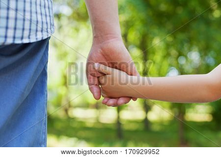 Father holds hand of the little child against beautiful bokeh background in sunny summer day, happy family concept.