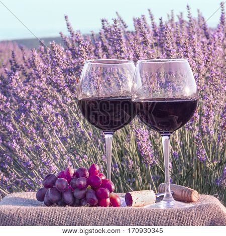 A square photo of two glasses of red wine with grapes in a lavender field, with a retro corkscrew and a cork. Toned image
