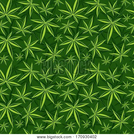 Cannabis, weed, marijuana leaves vector seamless pattern. Cannabis green background, illustration of drug medicine cannabis