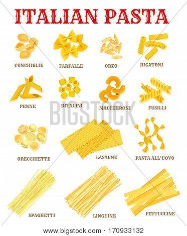 Italian pasta list of different shapes with names. Italian cuisine macaroni poster with spaghetti, rigatoni, penne, fusilli, farfalle, lasagna, noodle, orzo, fettuccine, ditalini for food, menu design