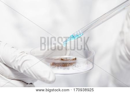 Pipette With Blue Liquid And Soil Sample In The Hands Of Researchers Closeup
