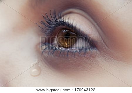 The Eye Of Cryng Female