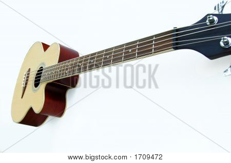 Long Neck, Acoustic Bass