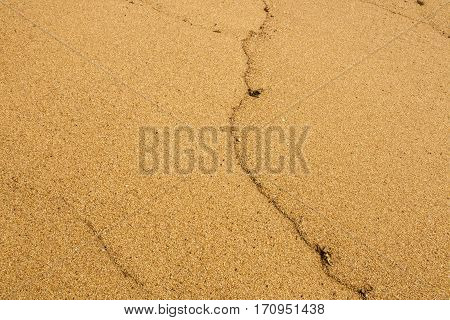 Golden Patterns Grain And Textures Of Sea Sand