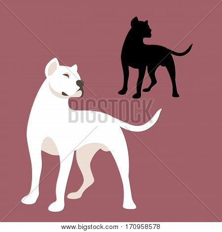 Dog Argentine vector illustration style Flat set