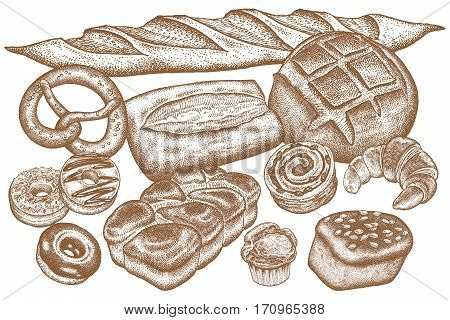 Bread products set - rye bread ciabatta white bread whole-grain bread croissant French baguette croissant pretzel donut muffin isolated on white background. Vector food illustration art.