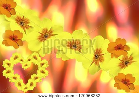 Flowers violets yellow. blurry yellow-red background. Card for Valentine's Day. floral collage. flower composition.