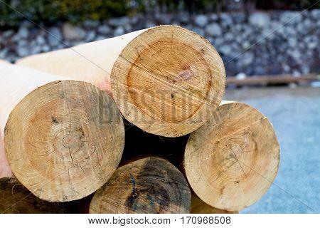 piles of log outdoors