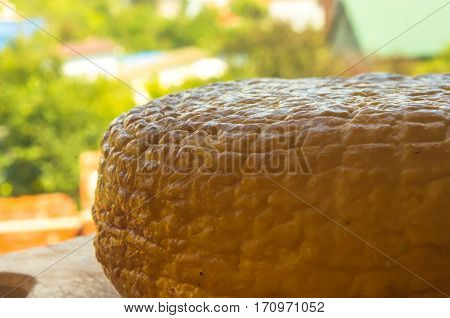 head of traditional Adygei cheese handmade on wooden Board