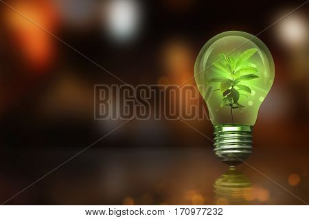 Small Plant Inside Light Bulb With Blurred Light