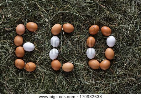 Poultry ecological farm background. Fresh brown and white eggs on hay in eco letters. Top view. Rural still life, natural organic healthy food concept.