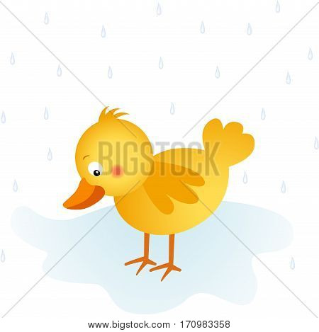 Scalable vectorial image representing a springtime rain chick, isolated on white.