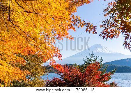 Mount Fuji and lake kawaguchi