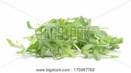 Ruccola green leaves of salad isolated on white