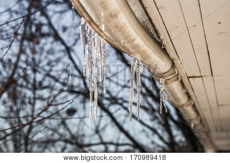 Ice Icicles On The Roofs Of Houses