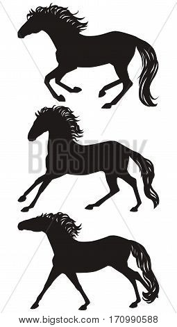 Vecor running horses silhouettes set. Isolated galloping group of a horses black on white