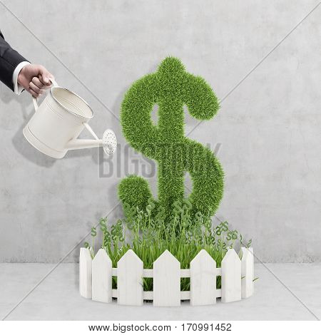 Hand of a businessman in a suit with a watering can watering a plant shaped as a dollar sign. Concept of investment management.