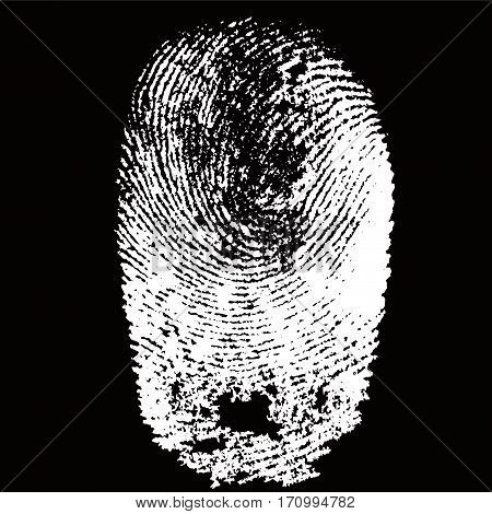 White fingerprint shape on black background for secure identification. Vector illustration