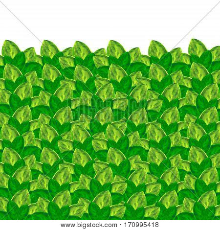 filled with watercolor light and dark green leaves background