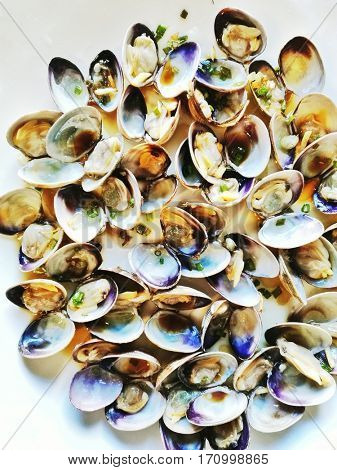 fresh seafood clams ready for eat