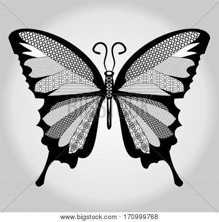 Butterfly black and white drawing with hatched parts on wings