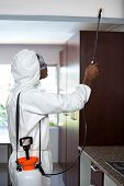 Pest control man spraying pesticide in kitchen poster