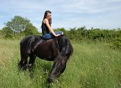 young teen and her best friend black stallion poster