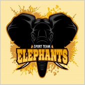 Elephants - sport club team symbol. Safari hunt badge of yellow, elephant tusk. Vector sign for africa hunting sport poster