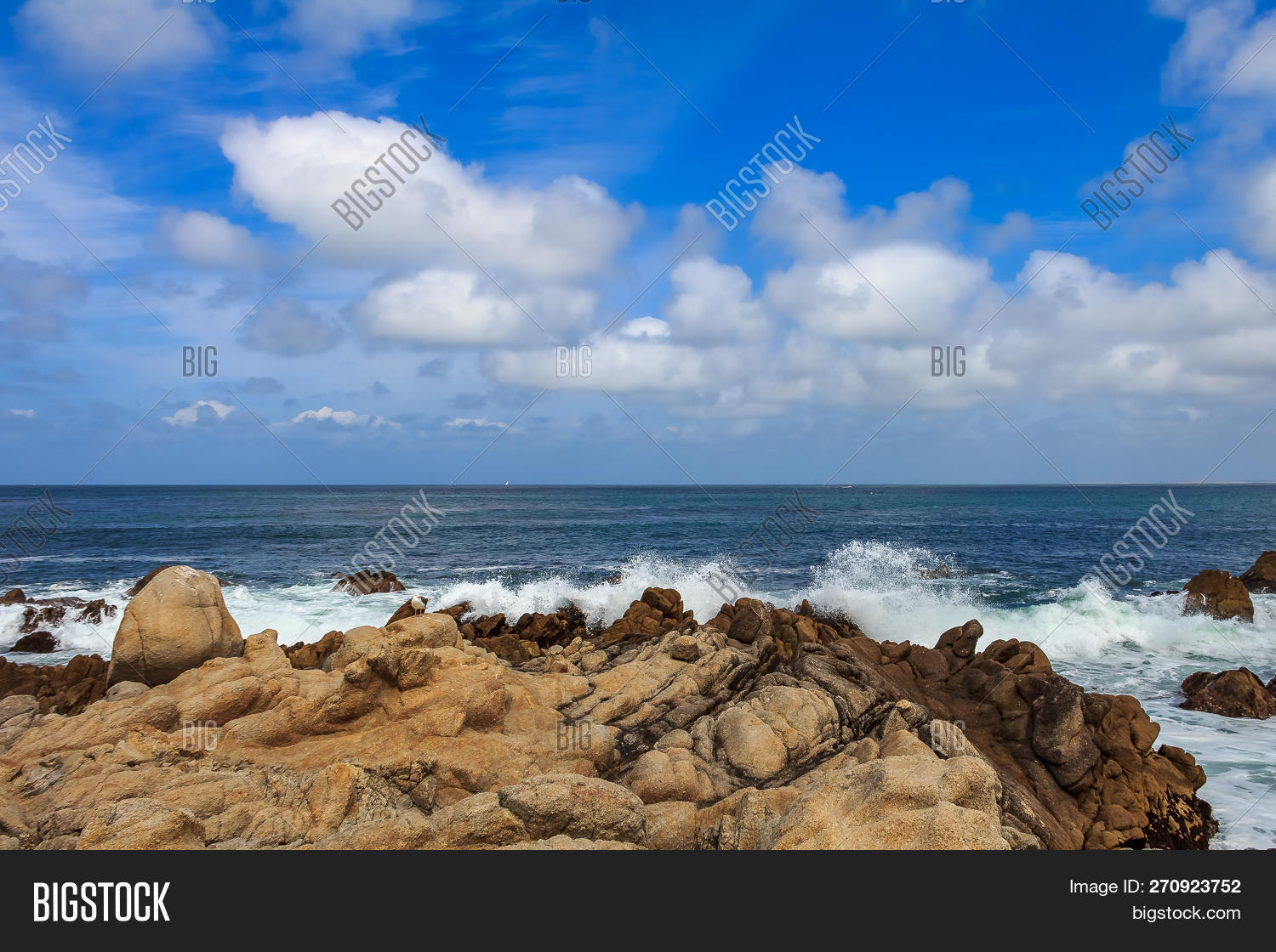 Pacific Ocean Waves Image & Photo (Free Trial) | Bigstock