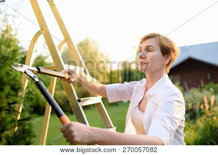 Portrait Of Mature Female Gardener. Woman Working With Secateur In Domestic Garden At Summer Day. Ga