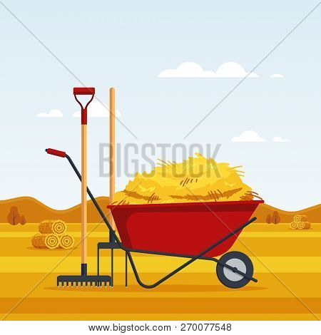 Rural Landscape With Dried Haystacks On Fields And Red Flat Gardening Wheelbarrow With Bale Of Hay,