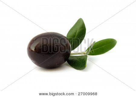 Ripe olive with leaves