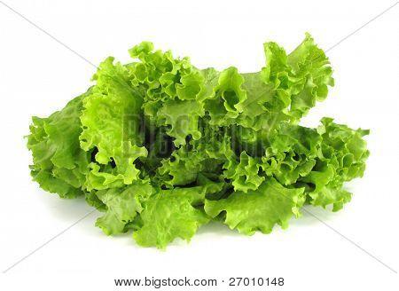 lettuce crisp