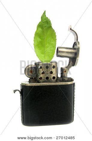 Encendedor ecológico para la forestación y reforestación