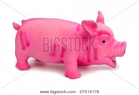 Rubber pig toy for dogs poster