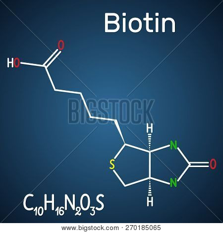 Biotin (vitamin B7). Structural Chemical Formula And Molecule Model On The Dark Blue Background. Vec