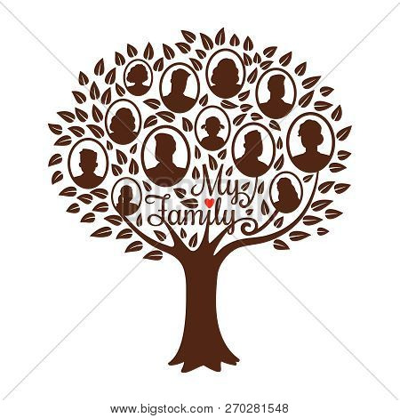Genealogy Tree. Genealogical Family Tree Vector Illustration, Vintage Dynasty Ancestry Drawing Silho