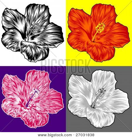 Set of color styles with hibiscus flower