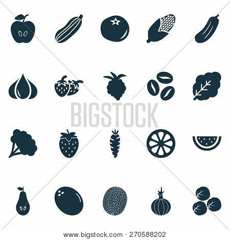 Fruit Icons Set With Pear, Fruit, Maize And Other Caffeine Elements. Isolated Vector Illustration Fr